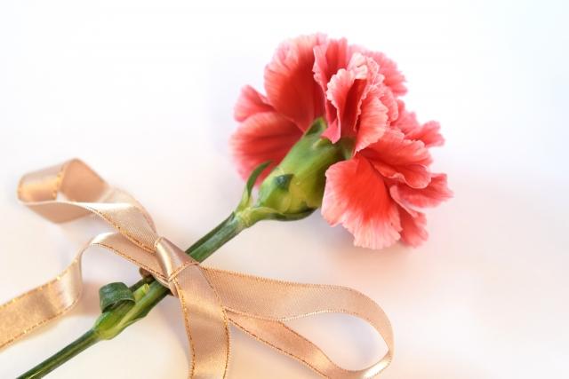 Q.義母さんへ母の日のプレゼントに何を贈りますか?